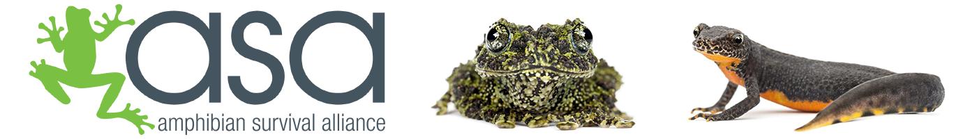 https://www.amphibians.org/wp-content/uploads/2019/04/headerlogo.png